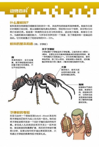 X探险特工队 万兽之王II系列 08:狂蚁之灾
