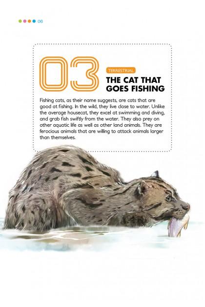 1-2-3, I've Got It!: Animals